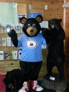 boulder-bear-motor-lodge-2016-14